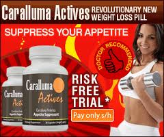 Caralluma Actives Appetite Suppressant Pills